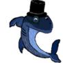 elegant sharks